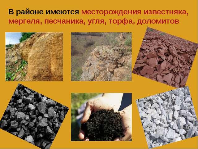 В районе имеются месторождения известняка, мергеля, песчаника, угля, торфа, д...