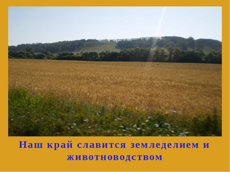 Наш край славится земледелием и животноводством