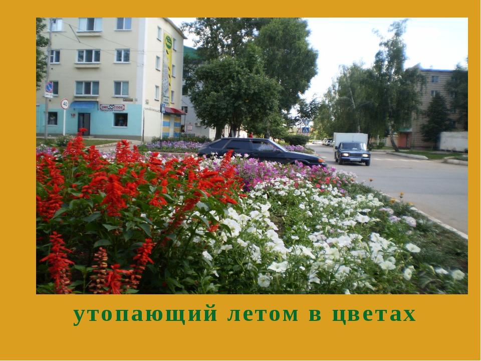 утопающий летом в цветах