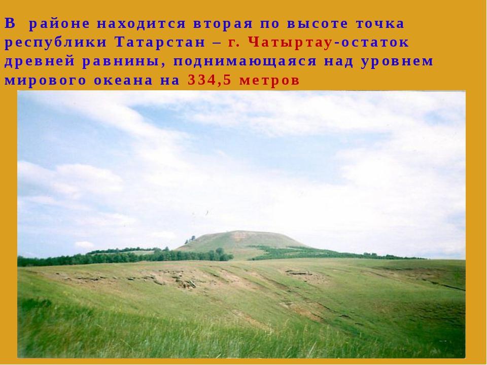 В районе находится вторая по высоте точка республики Татарстан – г. Чатыртау...