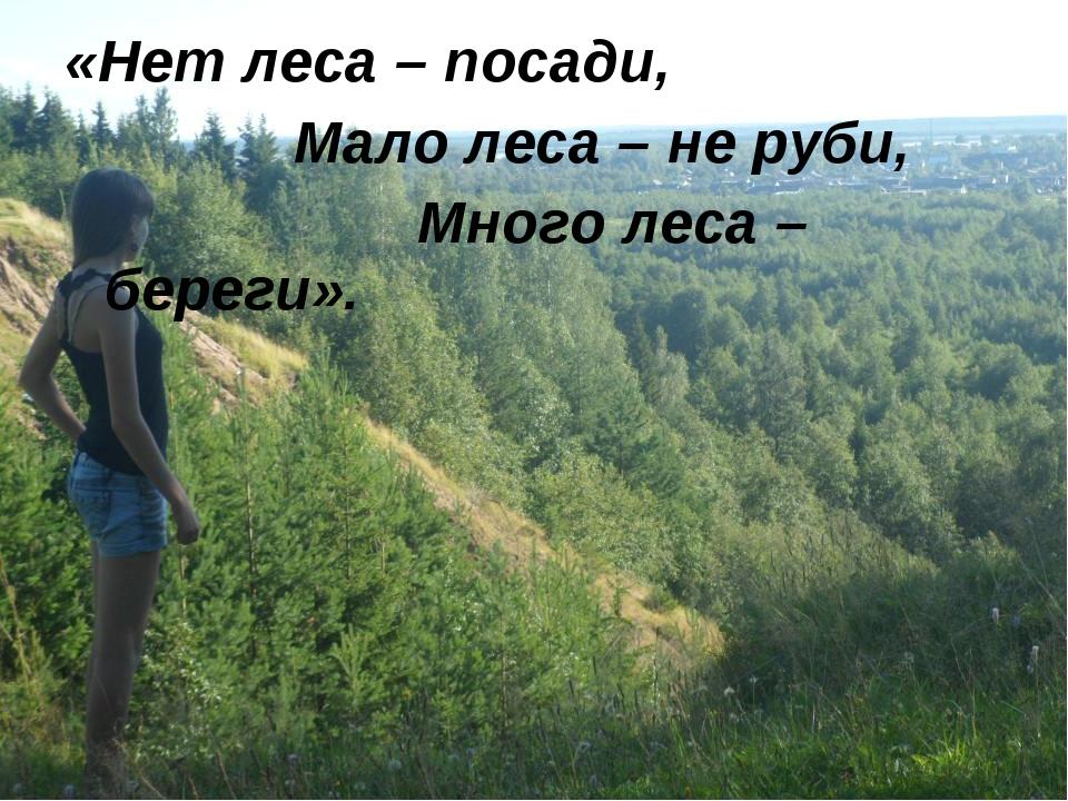 «Нет леса – посади,  Мало леса – не руби,  Много леса – береги».