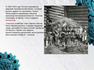В 1900-1903 году Россия переживала мировой экономический кризис, который боль