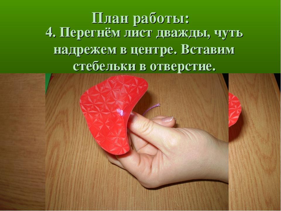 План работы: 4. Перегнём лист дважды, чуть надрежем в центре. Вставим стебель...