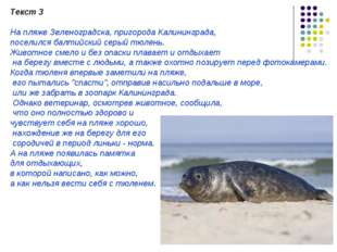 Текст 3 На пляже Зеленоградска, пригорода Калининграда, поселился балтийский