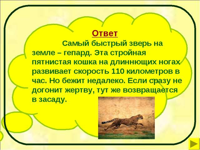 Ответ Самый быстрый зверь на земле – гепард. Эта стройная пятнистая кошка...