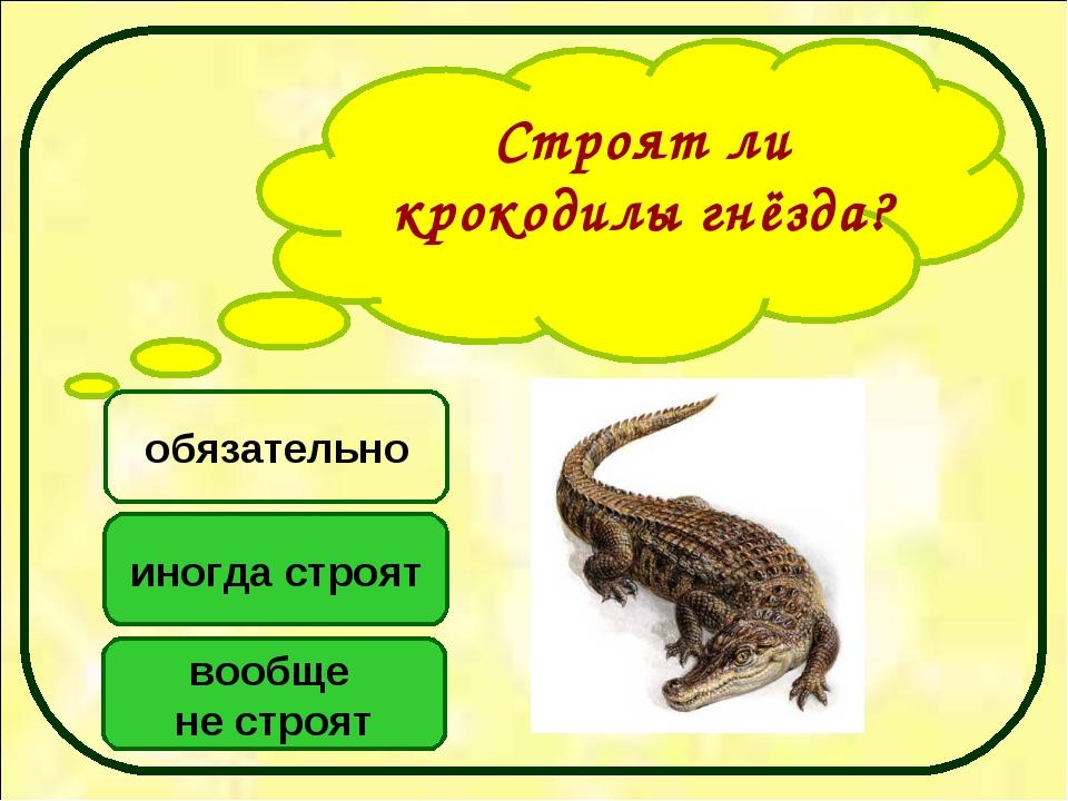 Строят ли крокодилы гнёзда? иногда строят вообще не строят обязательно