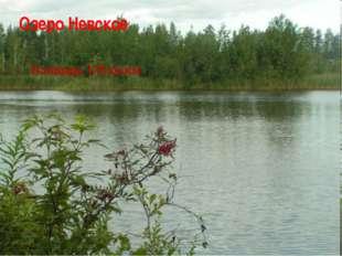 Озеро Невское Площадь 178 кв.км