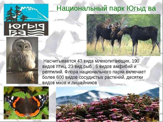 Национальный парк Югыд ва Насчитывается 43 вида млекопитающих, 190 видов птиц...