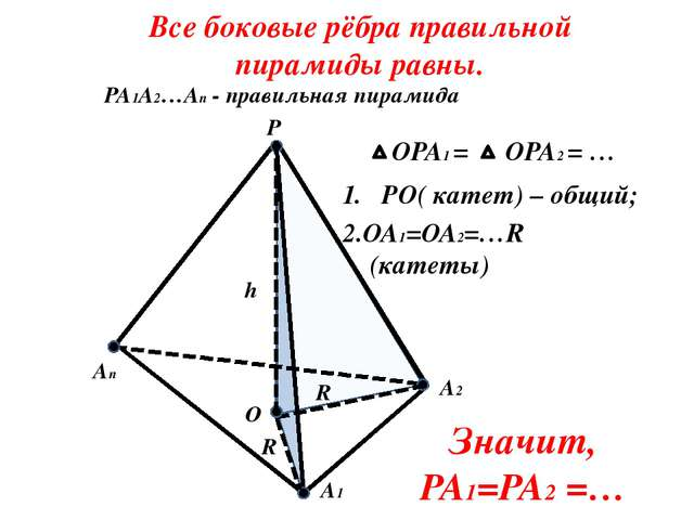 PO( катет) – общий; Все боковые рёбра правильной пирамиды равны. P A2 An A1...