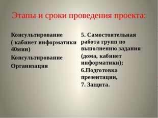 Этапы и сроки проведения проекта: Консультирование ( кабинет информатики 40ми