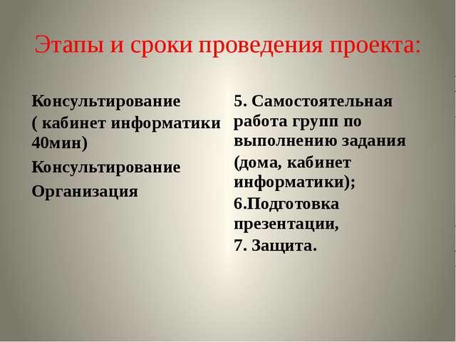 Этапы и сроки проведения проекта: Консультирование ( кабинет информатики 40ми...