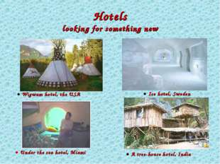 Hotels looking for something new ● A tree-house hotel, India ● Ice hotel, Sw
