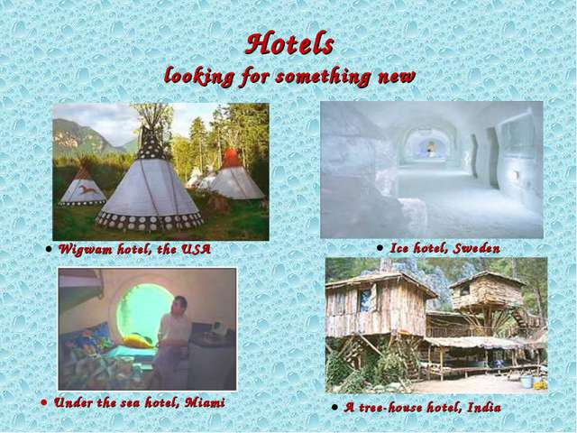 Hotels looking for something new ● A tree-house hotel, India ● Ice hotel, Sw...