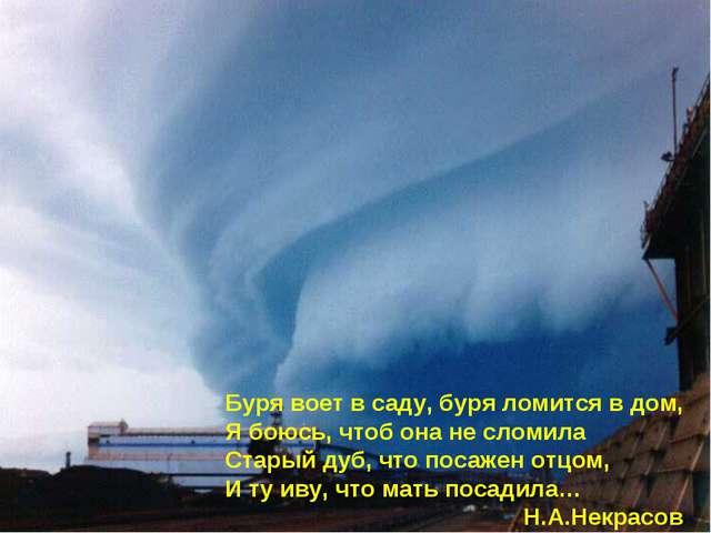 Буря воет в саду, буря ломится в дом, Я боюсь, чтоб она не сломила Старый дуб...