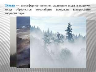 Туман— атмосферное явление, скопление воды в воздухе, когда образуются мельч