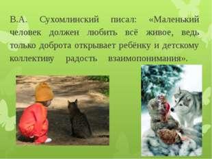 В.А. Сухомлинский писал: «Маленький человек должен любить всё живое, ведь тол