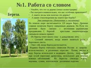 №1. Работа со словом Береза. - Узнайте, что это за дерево (показ иллюстрации)
