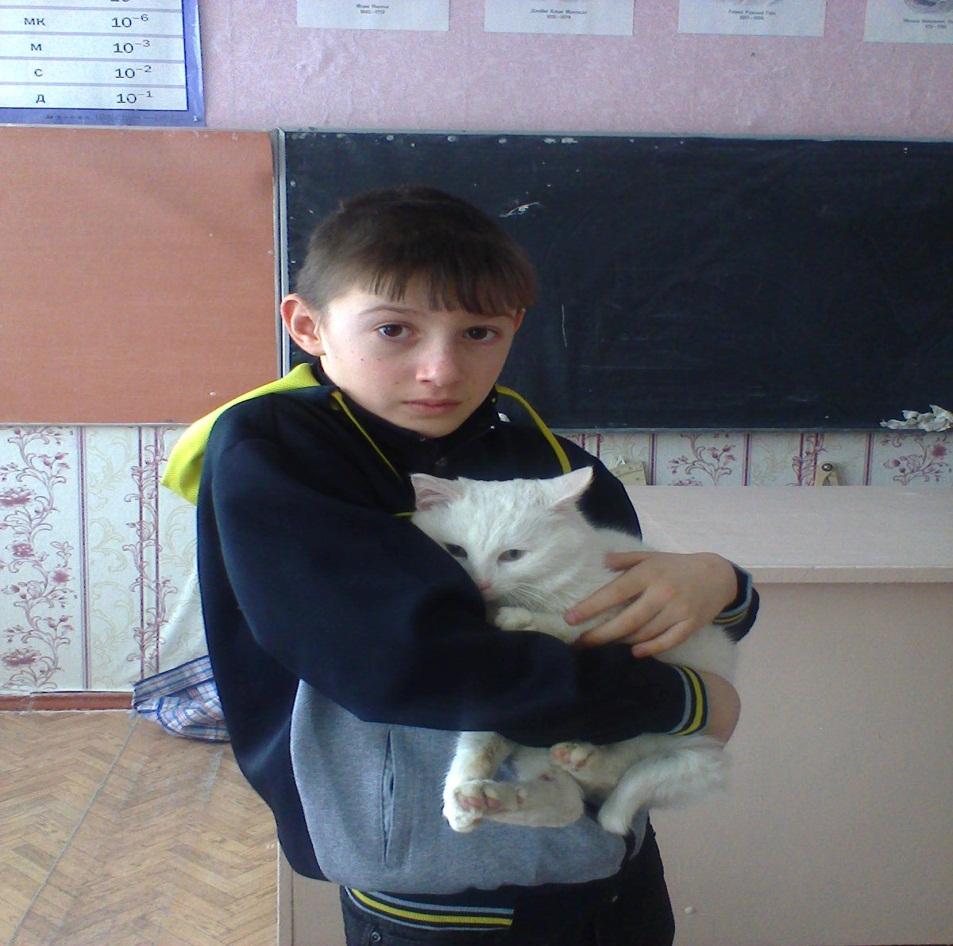 H:\Фото кошка\фото1090.jpg