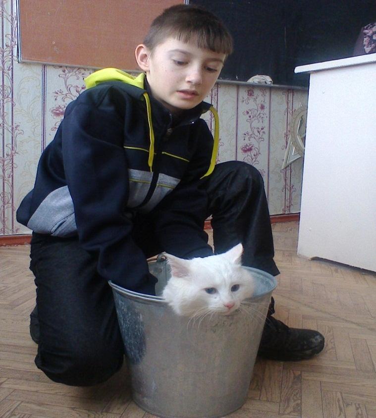 H:\Фото кошка\фото1092.jpg