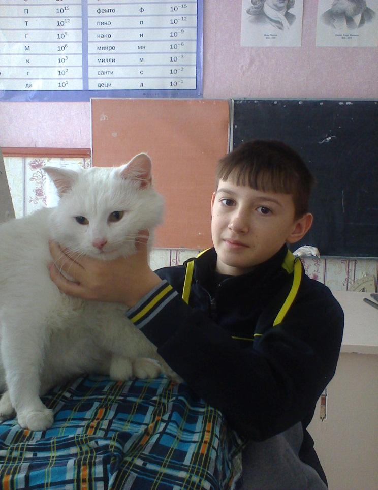 H:\Фото кошка\фото1088.jpg