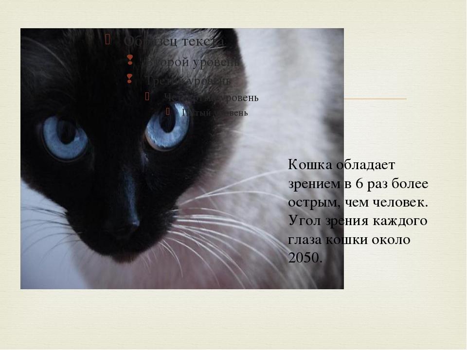 Кошка обладает зрением в 6 раз более острым, чем человек. Угол зрения каждог...