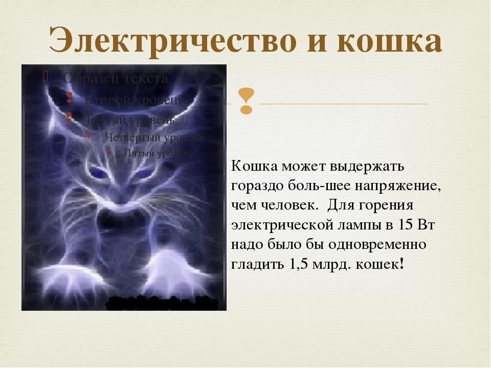 Электричество и кошка Кошка может выдержать гораздо большее напряжение, чем...
