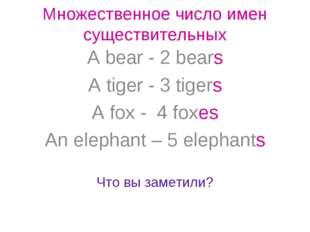 Множественное число имен существительных A bear - 2 bears A tiger - 3 tigers