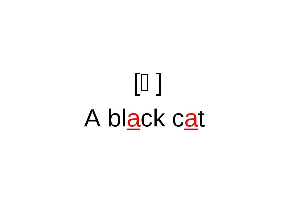 [ᵆ] A black cat