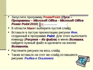 Запустите программу PowerPoint (Пуск – Программы – Microsoft Office - Microso