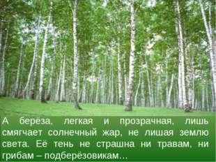 А берёза, легкая и прозрачная, лишь смягчает солнечный жар, не лишая землю св
