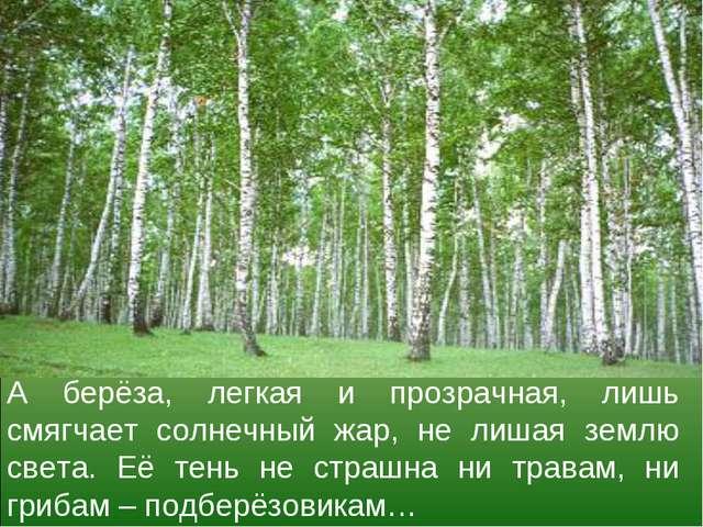 А берёза, легкая и прозрачная, лишь смягчает солнечный жар, не лишая землю св...