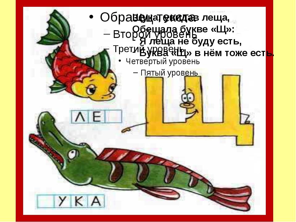 Щука, увидав леща, Обещала букве «Щ»: Я леща не буду есть, Буква «Щ» в нём т...