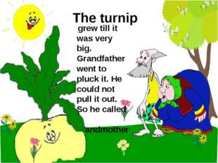 The turnip grew till it was very big. Grandfather went to pluck it. He could