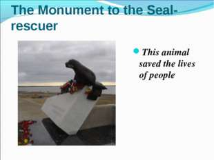 The Monument to the Seal-rescuer This animal saved the lives of people