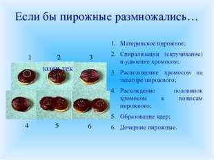 Если бы пирожные размножались… Материнское пирожное; Спирализация (скручивани