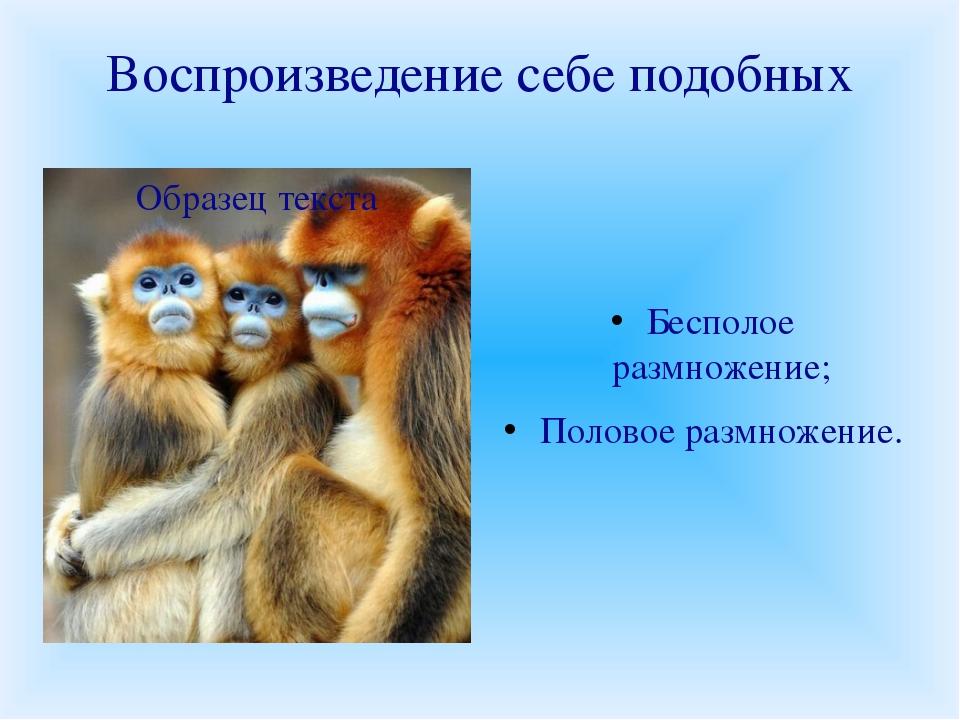Воспроизведение себе подобных Бесполое размножение; Половое размножение.