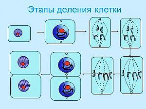 hello_html_395a363b.jpg