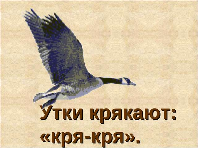 Утки крякают: «кря-кря».