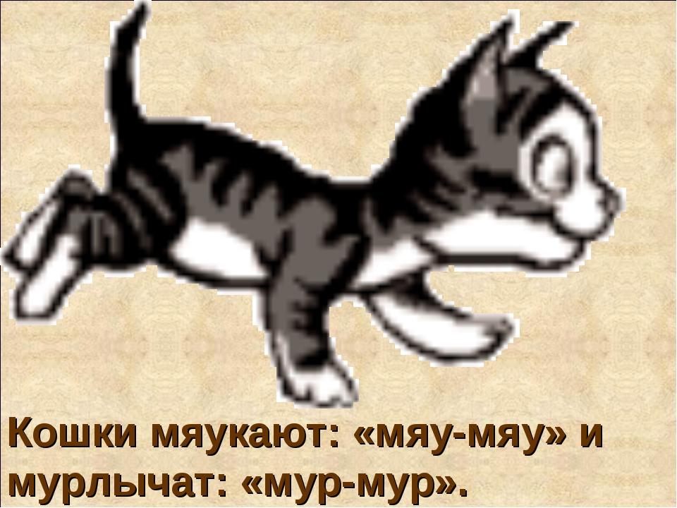 Кошки мяукают: «мяу-мяу» и мурлычат: «мур-мур».