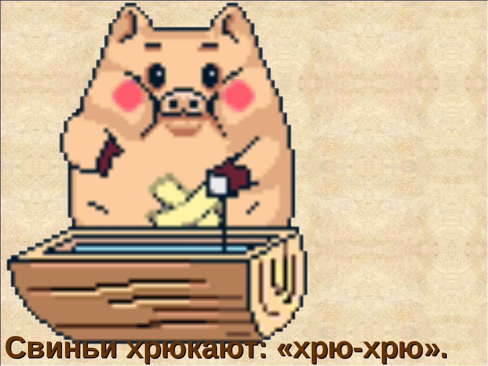 Свиньи хрюкают: «хрю-хрю».