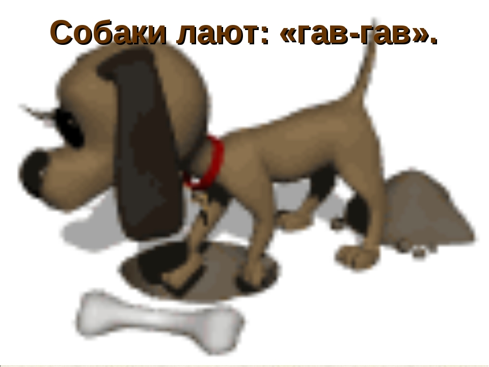 Собаки лают: «гав-гав».
