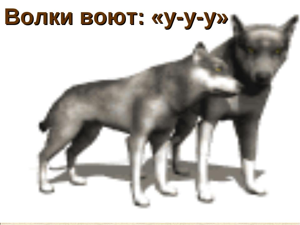 Волки воют: «у-у-у»