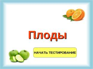 НАЧАТЬ ТЕСТИРОВАНИЕ Плоды