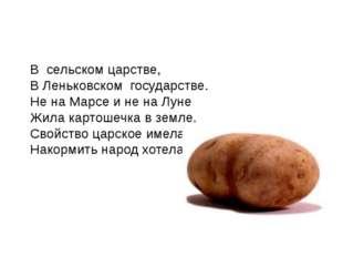 В сельском царстве, В Леньковском государстве. Не на Марсе и не на Луне Жила