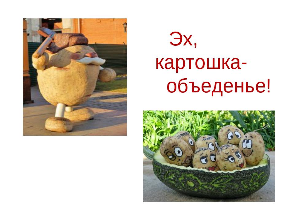 Эх, картошка- объеденье! Образец подзаголовка