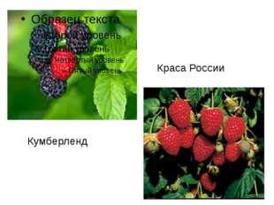 Кумберленд Краса России
