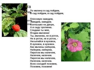 По малину в сад пойдем, В сад пойдем, в сад пойдем, Плясовую заведем, Заведе