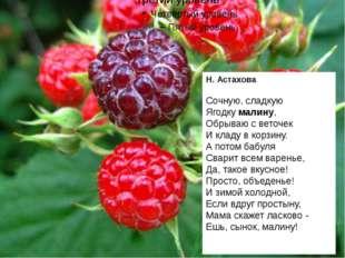 Н. Астахова Сочную, сладкую Ягодку малину, Обрываю с веточек И кладу в корзи