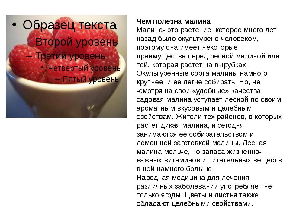 Чем полезна малина Малина- это растение, которое много лет назад было окульт...
