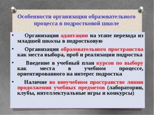 Особенности организации образовательного процесса в подростковой школе Органи
